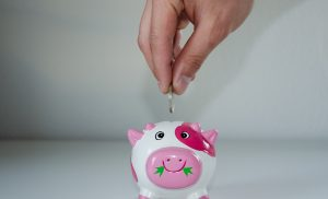 Savings Rate and savings percentage and how to calculate it